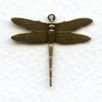 Medium Dramatic Dragonflies 26mm Oxidized Brass (6)