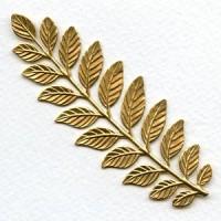 Fern Stamping Raw Brass 89x32mm (1)