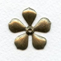 Rounded Petal Flowers Oxidized Brass 19mm (6)