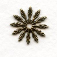 Flat Flower Oxidized Brass Stampings 18mm (12)