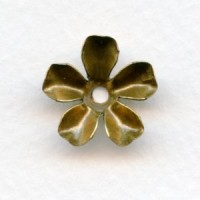 Large Blossom Flower Shapes Oxidized Brass 17mm (6)