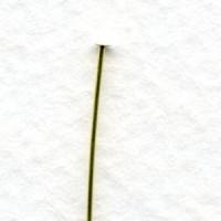 Head Pins Clean Raw Brass Soft 24 Gauge 100+