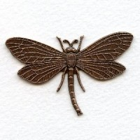 Dragonfly in Awesome Detail Oxidized Copper