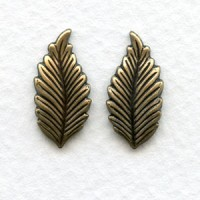 Favorite Leaves Great Size 19mm Oxidized Brass (6 Pairs)