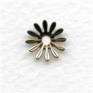 Dapt Flower Oxidized Brass Stampings 10mm (12)