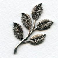 Smaller Leaf Sprays Oxidized Silver 50mm (2)
