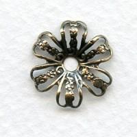 Flower Shape Bead Cap Spacer Filigree Oxidized Brass (12)