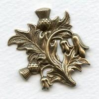 Thistle Flower Scottish Emblem Oxidized Brass 37mm (1)