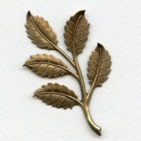 Dramatic Leaf Sprays Oxidized Brass 75mm (2)