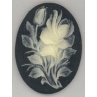 Cameo Ivory Rose on Jet Background 40x30mm