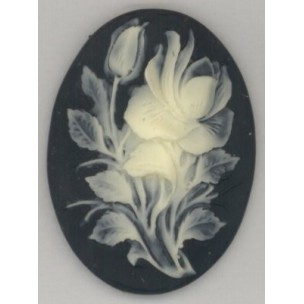 ^Cameo Ivory Rose on Jet Background 40x30mm