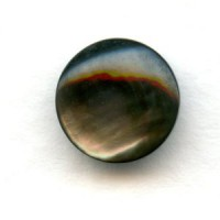 Black Tahiti Pearl 9mm Shell Cabochon