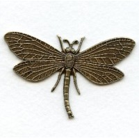 Dragonfly in Awesome Detail Oxidized Brass